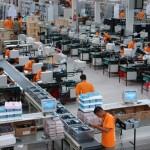 Praca przy produkcji w Holandii